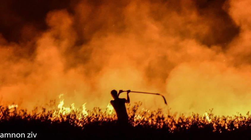 שריפת חורש בעוטף עזה. צילום: אמנון זיו
