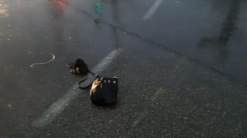 התיק של המנוחה מושלך על בכביש. צילום: אלירם משה