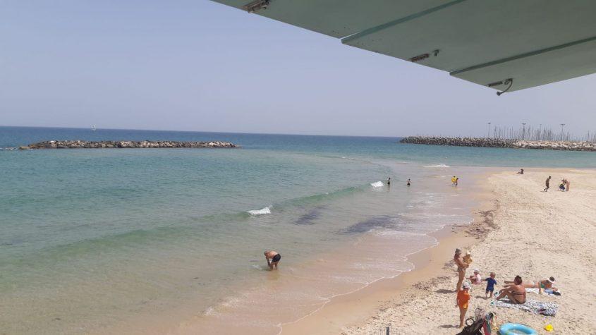 חוף דלילה. צילום: עוזי ז'אנו