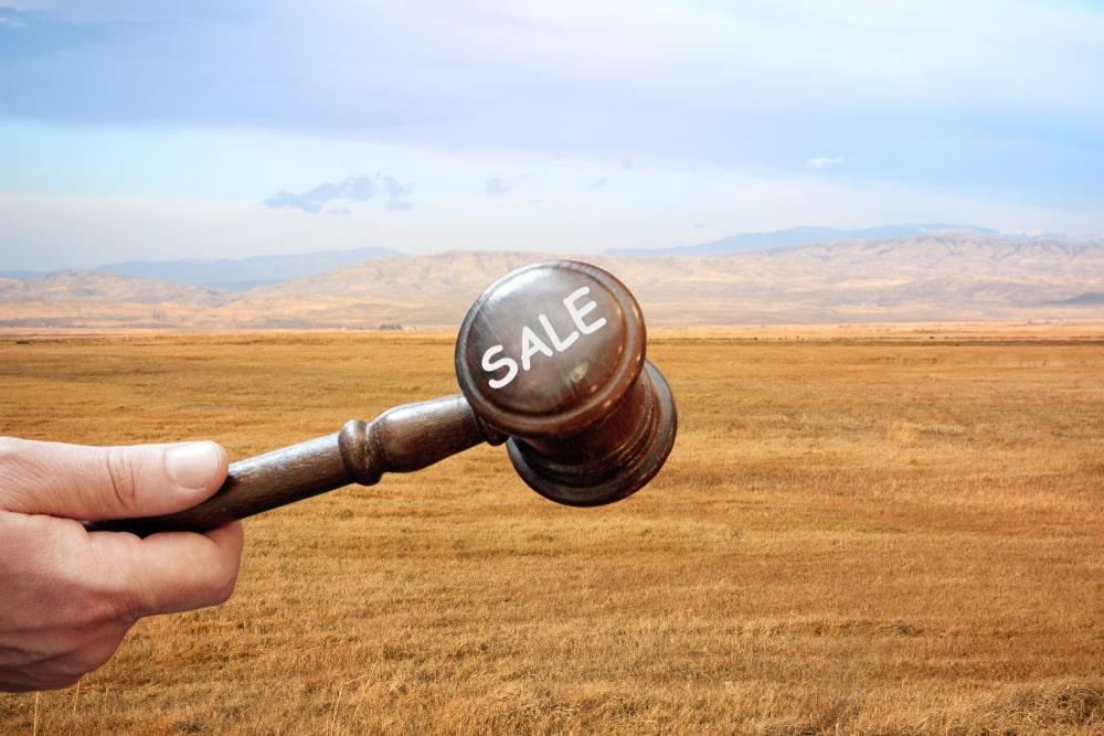 ביטחון למשקיעים בקרקעות חקלאיות (תמונה ממאגר shutterstock, צילום: Aleks822)