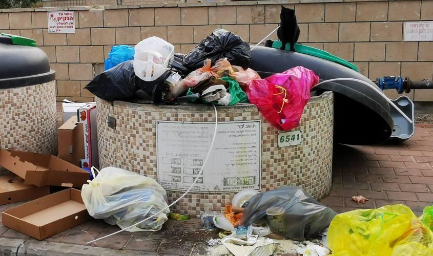 פח אשפה בשכונת פארק אלון באשקלון