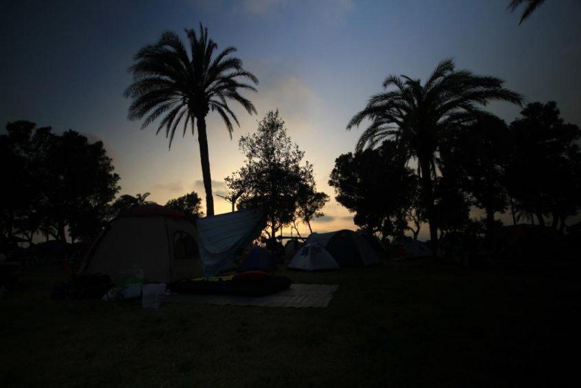חניון לילה הגן הלאומי באשקלון. צילום: אבי בהרי, רשות הטבע והגנים