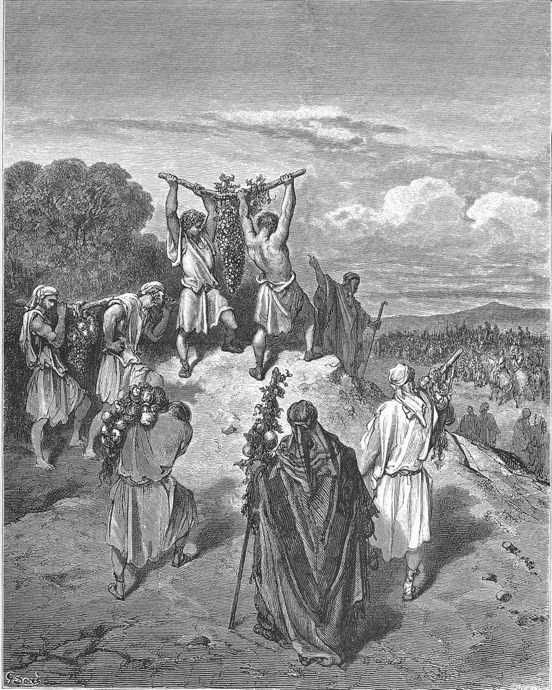 המרגלים מציגים בפני בני ישראל מפרי הארץ. איור מאת גוסטב דורה
