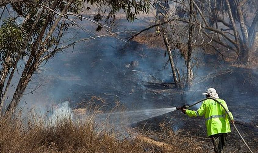 שריפה ביער כיסופים. צילום: אליהו הרשקוביץ