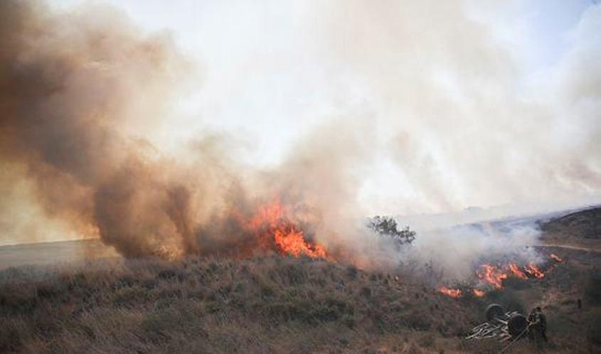 שריפה בשמורת בארי. צילום: אוהד צויגנברג