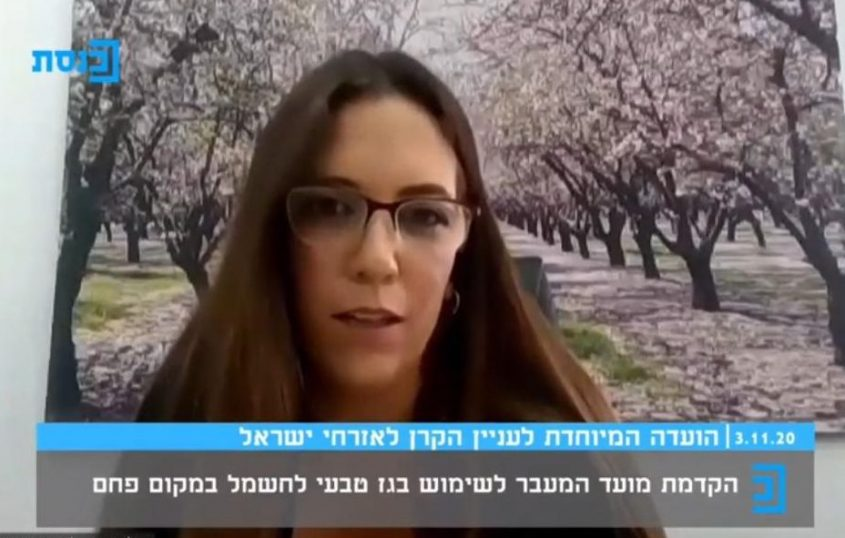 מיטל אמיתי מייצגת את תושבי אשקלון בישיבה בוועדת הכנסת. צילומסך, ערוץ הכנסת