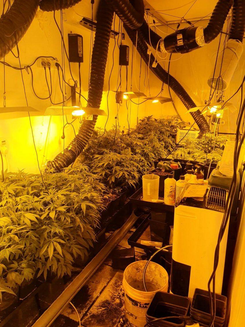 מעבדת הסמים שהתגלתה בדירה באשקלון. צילום: דוברות המשטרה