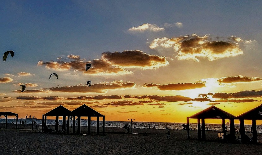 חוף דלילה. צילום: דני סבח