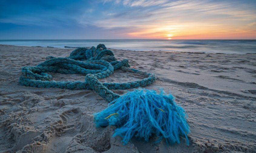 כחול על החול. צילום: דניאל אברהם